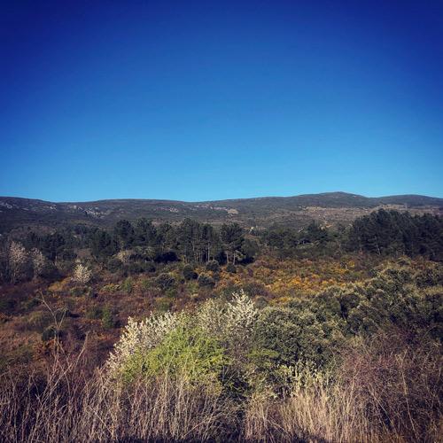 Sierra Enciña da Lastra 1