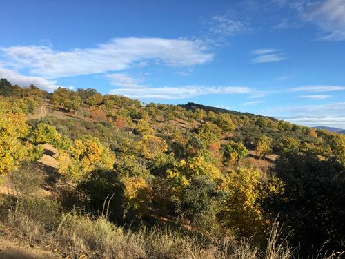 Sierra Enciña da Lastra 4